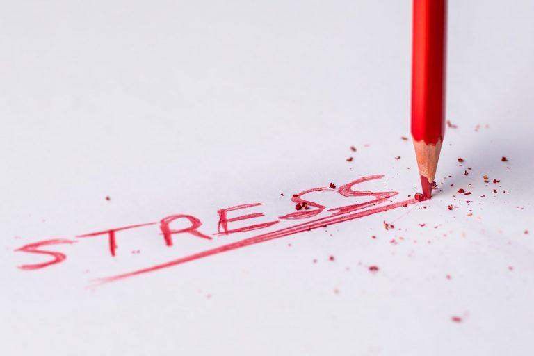 cbd bei stress Erfahrung